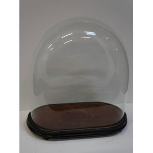 Victorian Glass Domes in Good