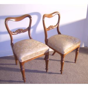 Victorian. Pair of faded Rosewood chairs, Kidney Shaped back. Fully sprung seats. Fully restored about ten years ago, in...