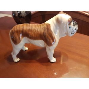 Beswick bulldog standing in excellent condition .