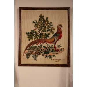A pleasant pheasant, hand work