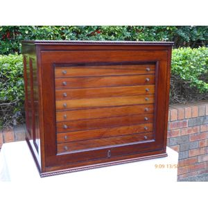 Antique Australian Cedar Collectors Cabinet
